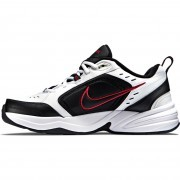 415445-101 Nike Air Monarch IV